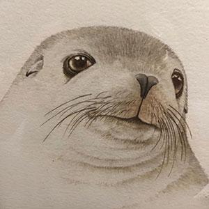 Airport Art - Mel Berris - Seal Pup