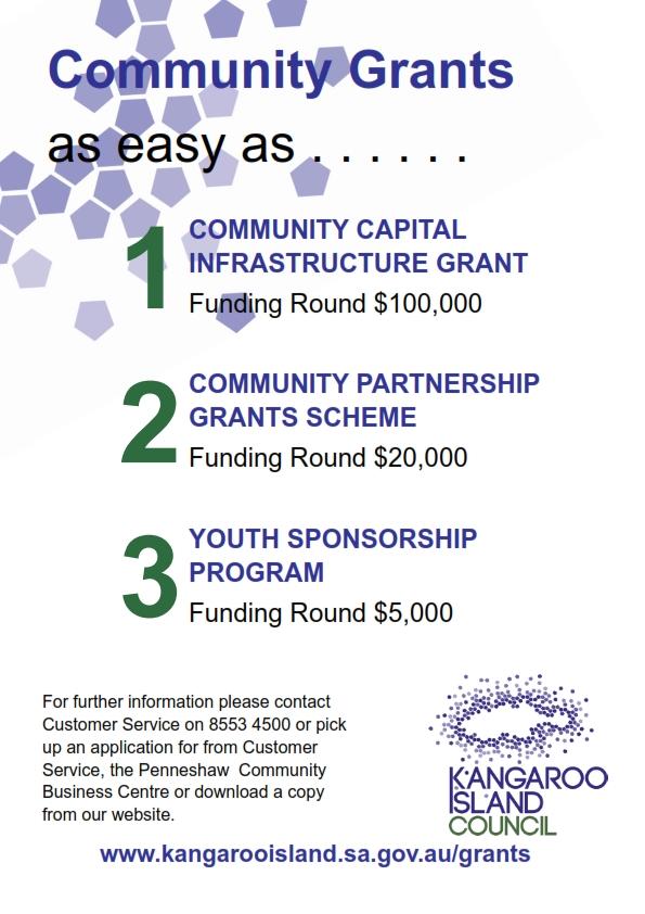 Council Grants Poster
