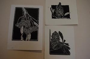 Merril Hansen Banksia 1 & 2 and Eucalypt 3
