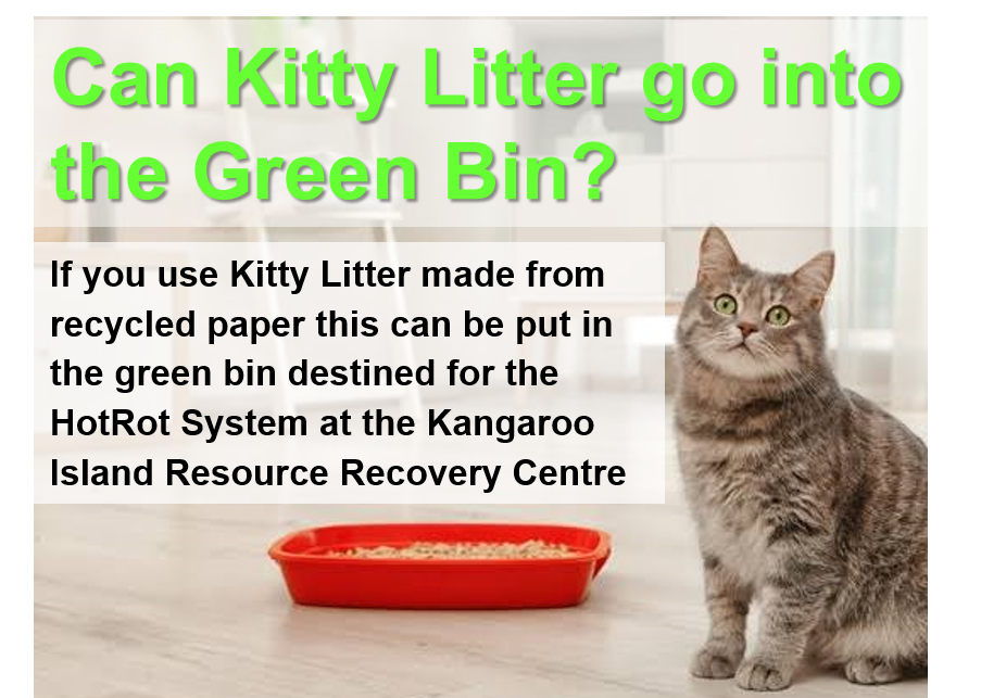 Kitty Litter